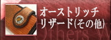 オーストリッチリザード(その他)